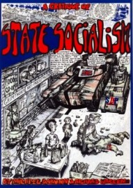 A Critique of State Socialism