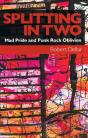 Splitting in Two: Mad Pride and Punk Rock Oblivion